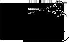 Carmina Peluquería Logo